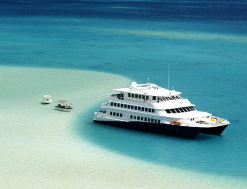 New! Haumana Cruises & Villa Ixora